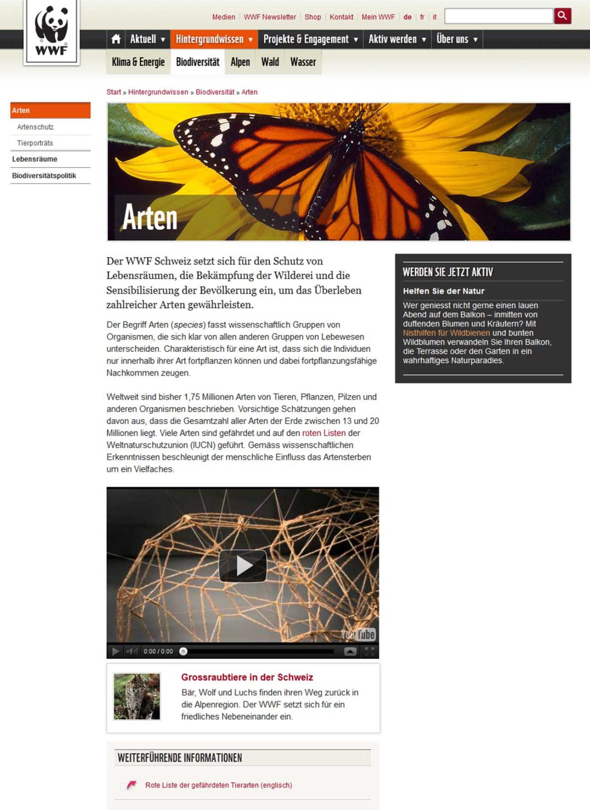 Detailseite Arten im Bereich «Biodiversität»
