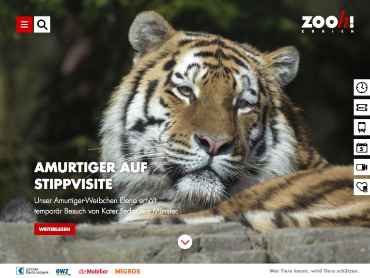 Screenshot von zoo.ch auf dem Desktop